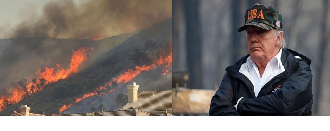 Trump Wildfire Together.jpg