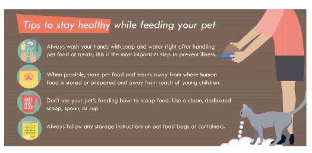 Safe Pet Food Handling