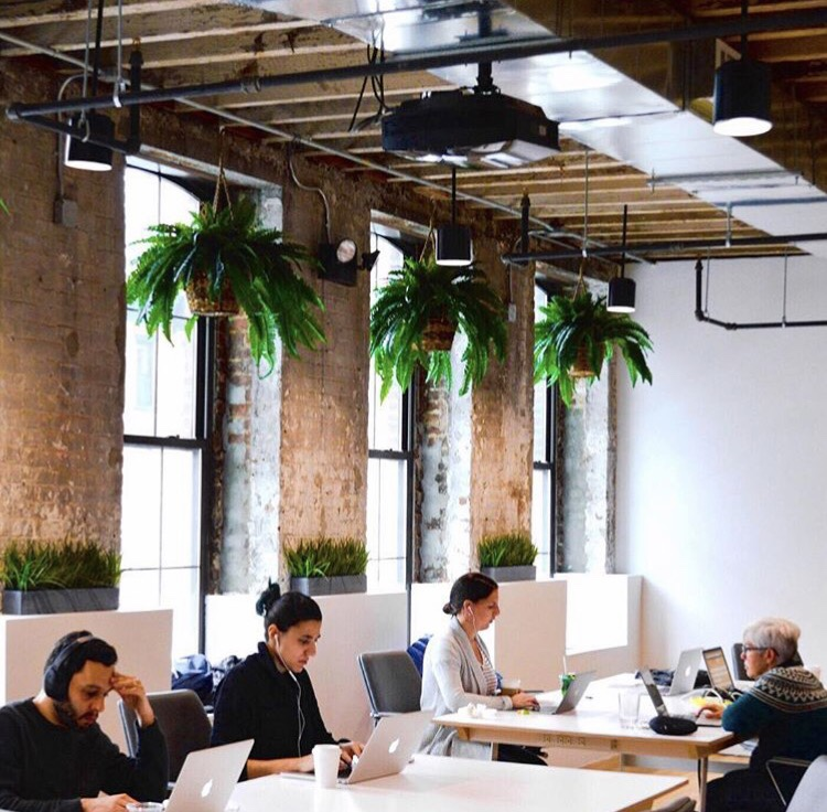 People working in a shared office space