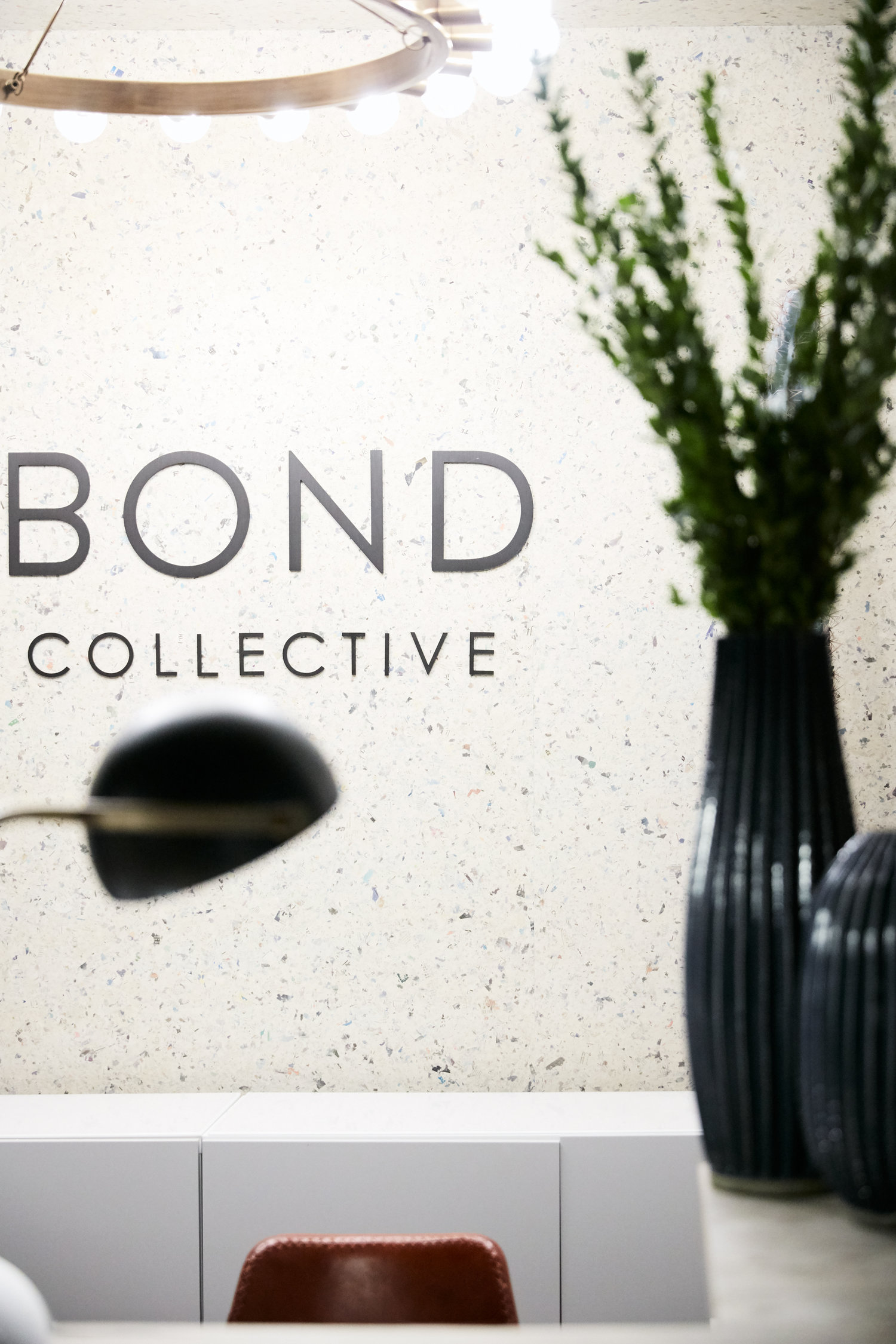 Bond Collective logo on a wall next to a plant