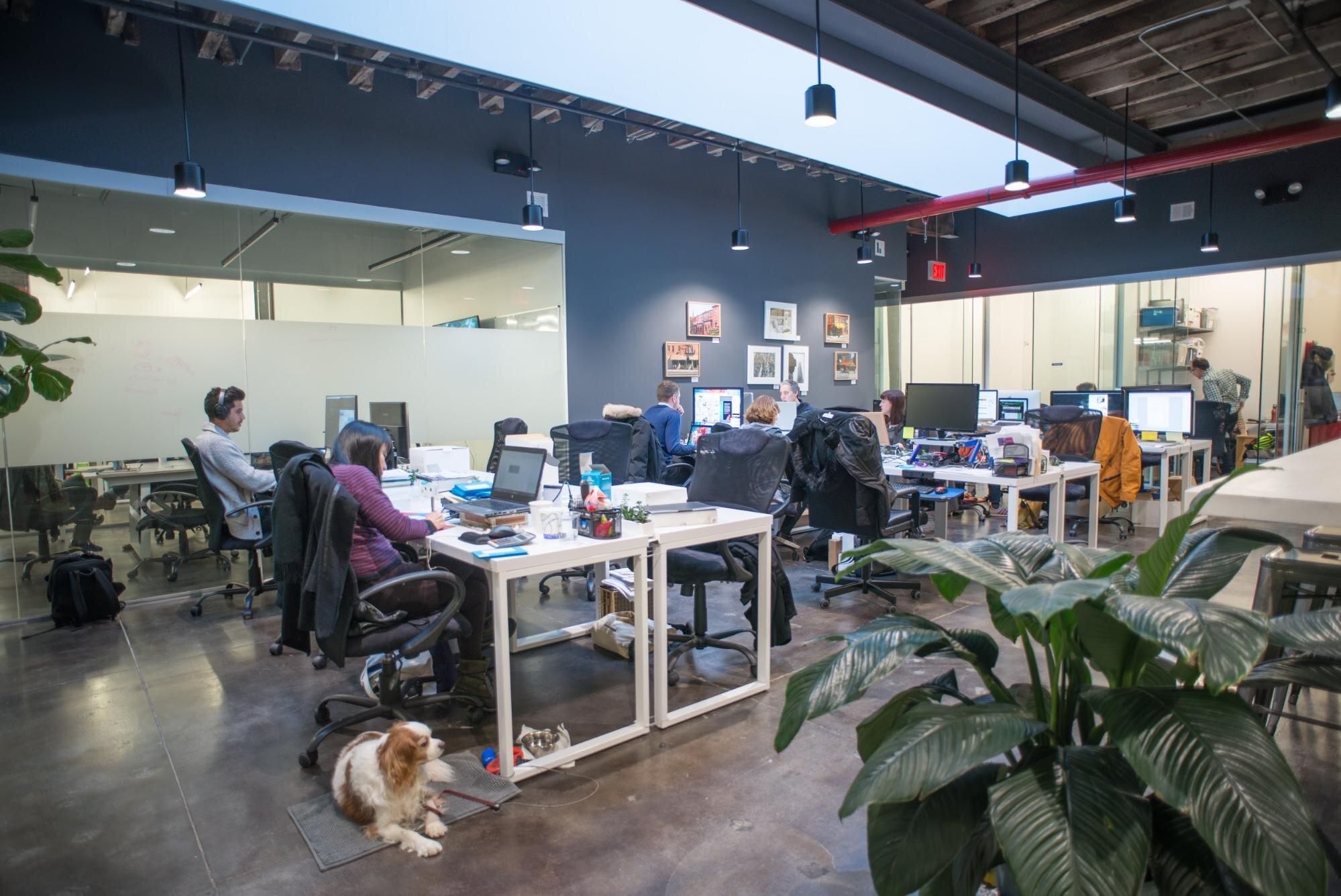 workers utilizing hot desking