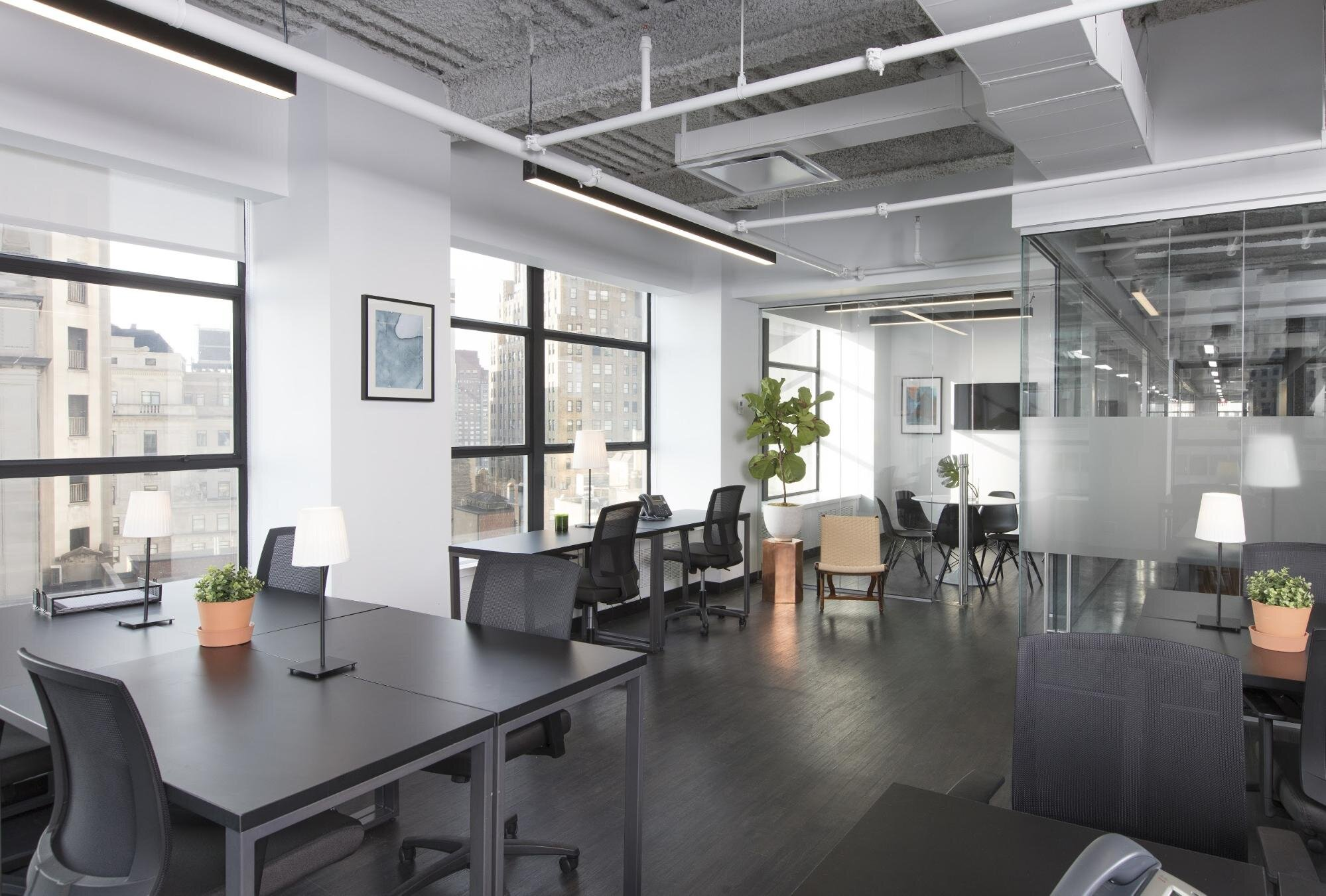 Open space office space planning with natural light and fresh plants