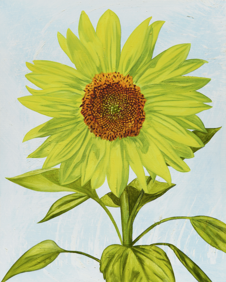 John Newsom,  Origin of Light  2019 'Meadow Paintings' Series 30 x 24 in Oil on canvas