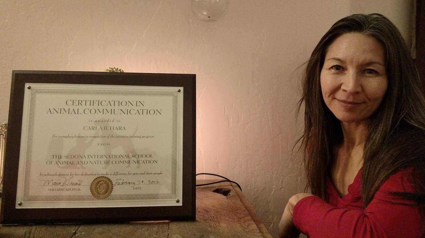 animal communication certificate
