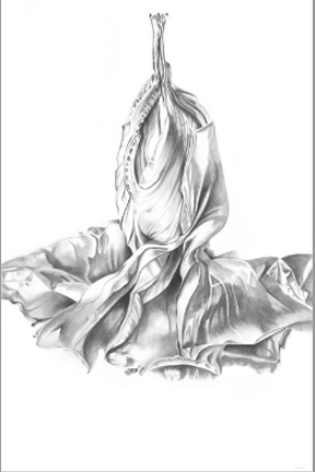 Barbara Kolo - Hibiscus Couplet - 47x33.jpg