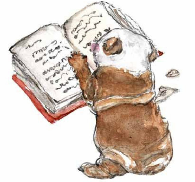Puppy+chewing+up+book (1).jpg