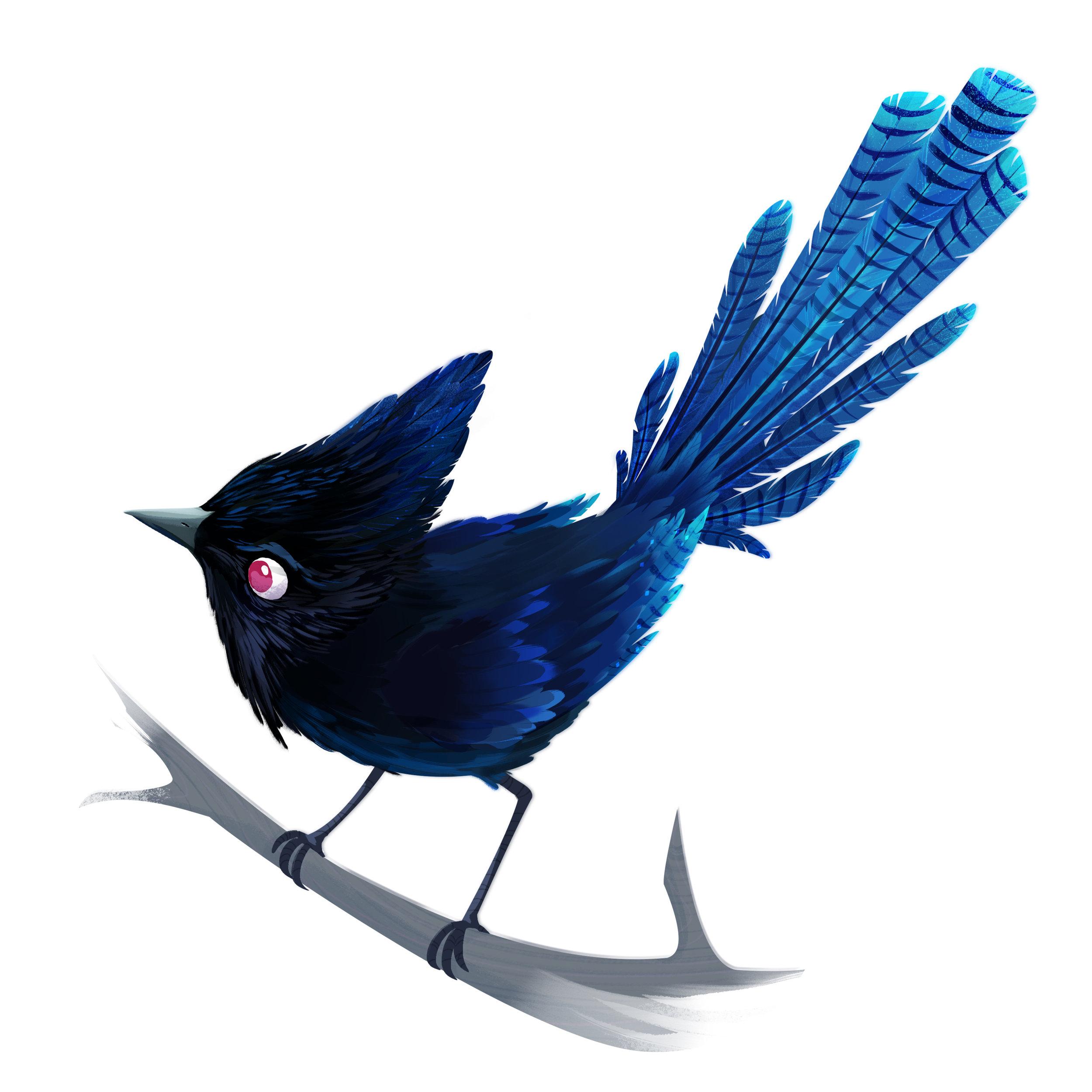 W_Birds_Print_Jay.jpg
