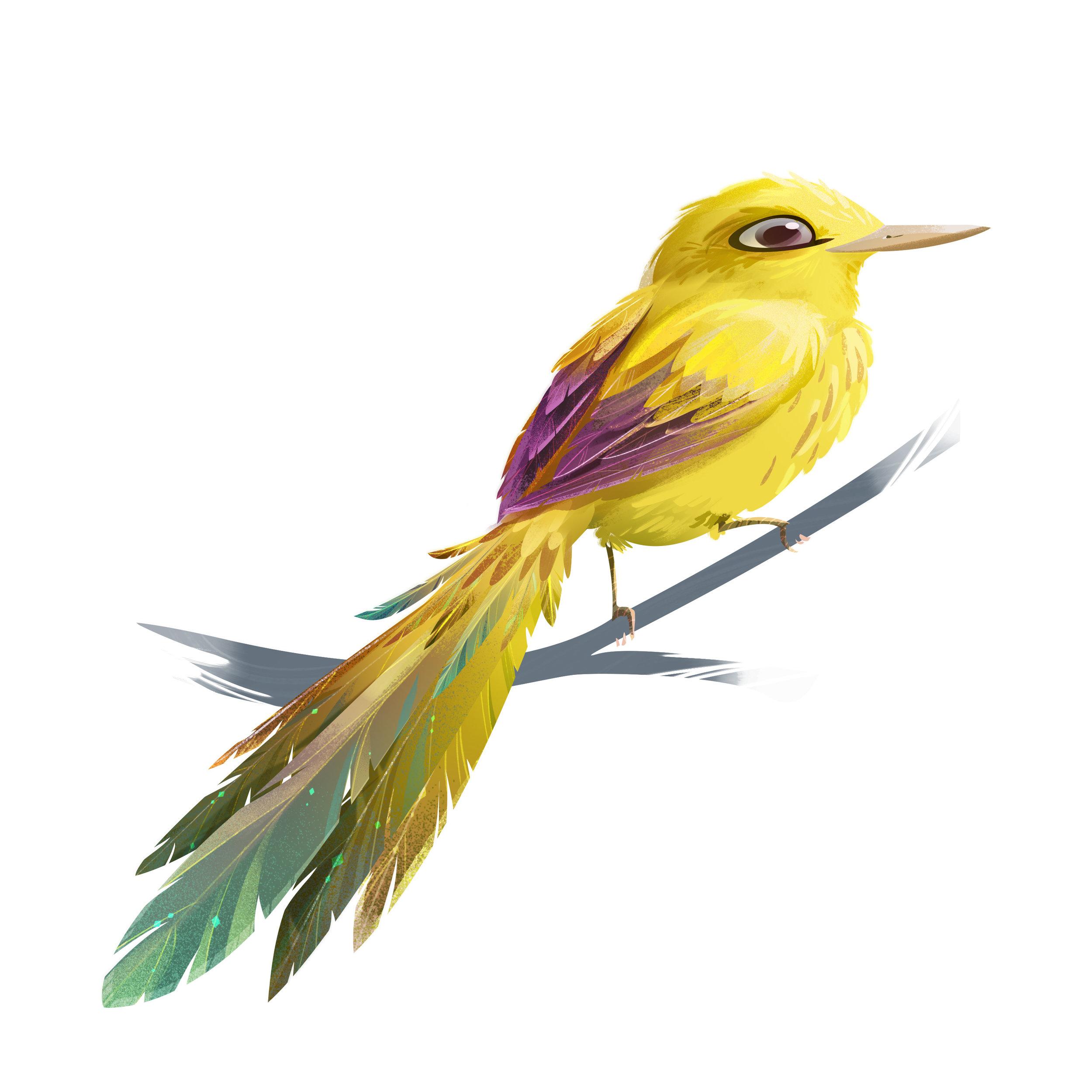 W_Birds_Print_Wabler.jpg
