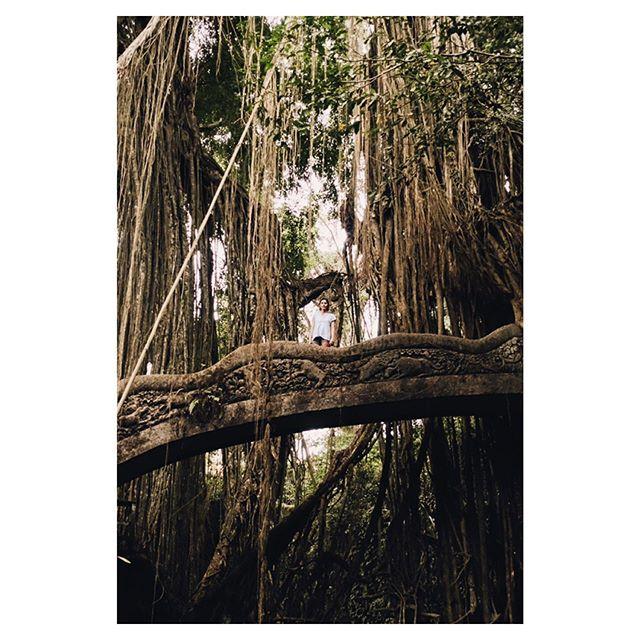 @taysiascarano on a footbridge in the Sacred Monkey Forest. Ubud, Bali.