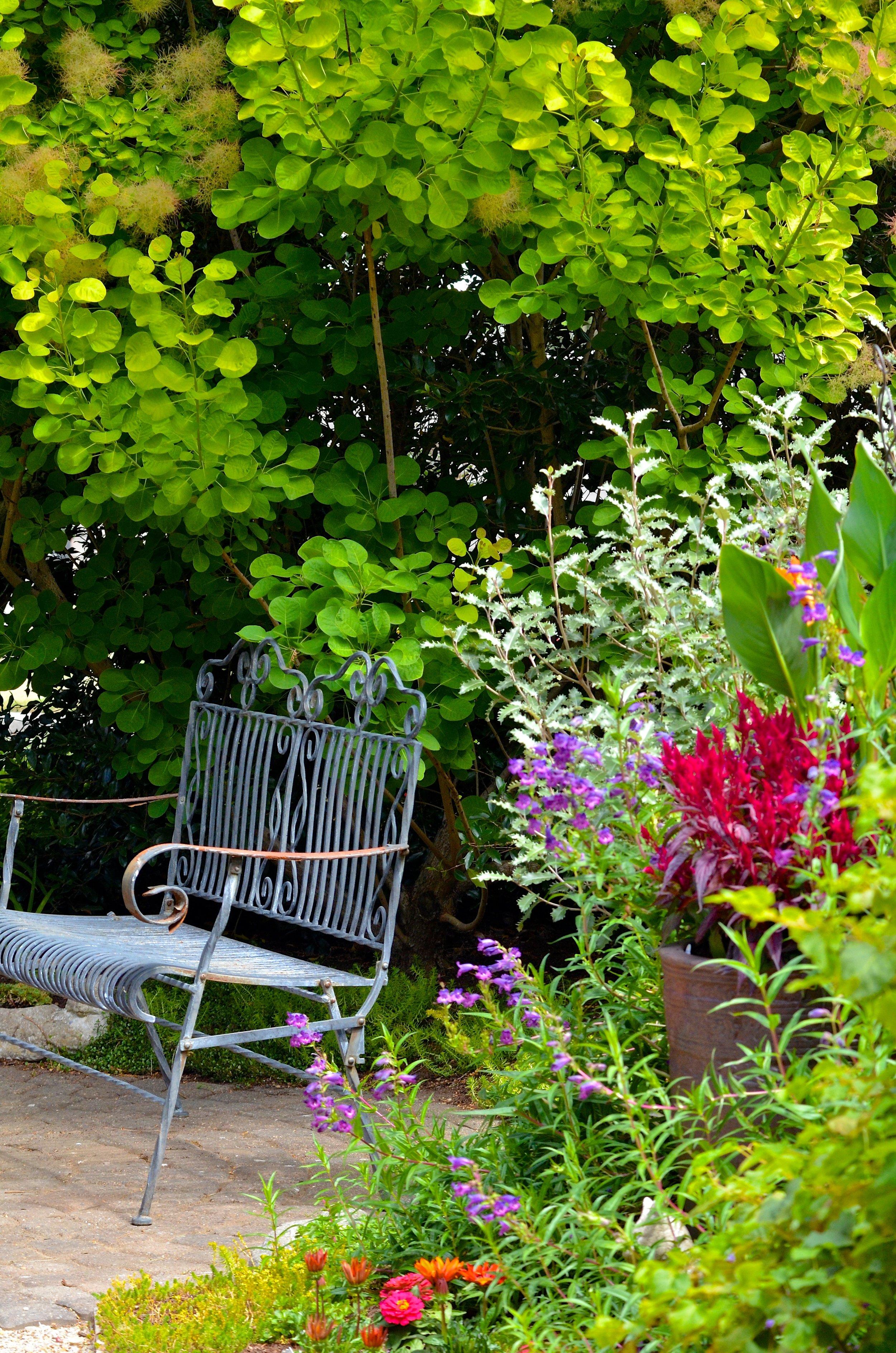 Hillier_Garden