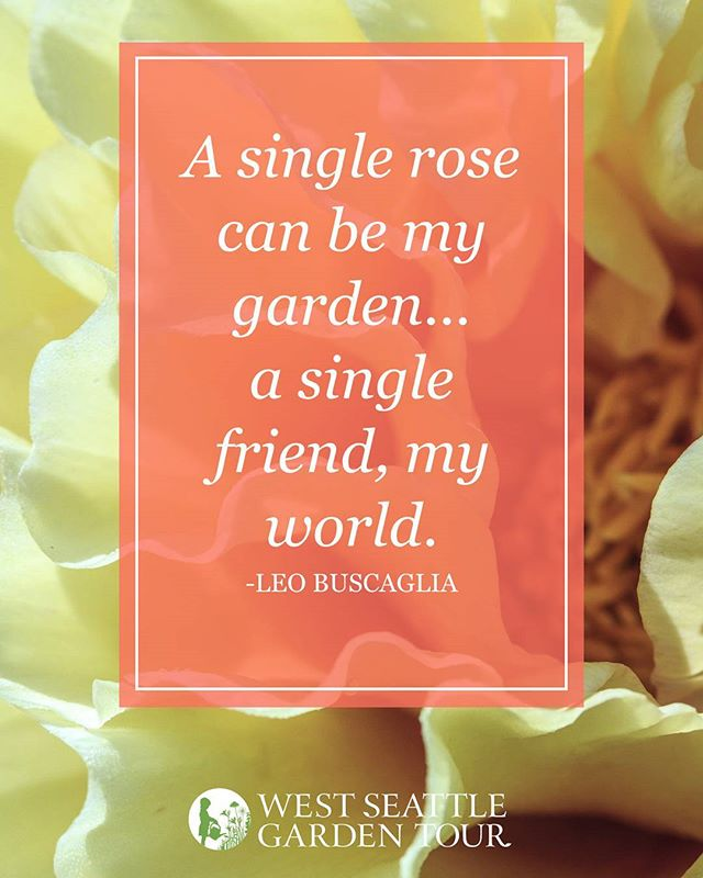 #gardeningquotes #gardeninspiration #quotestoliveby . . . #quotes #quoteoftheday #gardenlife #westseattle #pnwgardening #gardening #urbangarden #instagardenlovers #gardensofinstagram #ilovegardening #westseattlegardentour