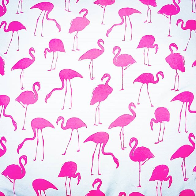 Swan noise...honk? (#Iwaschasedbyaswanonce) #pink #Swan #bird #fabric #pattern #print #honk #vocals