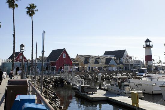 Oceanside Beachand Harbor  -