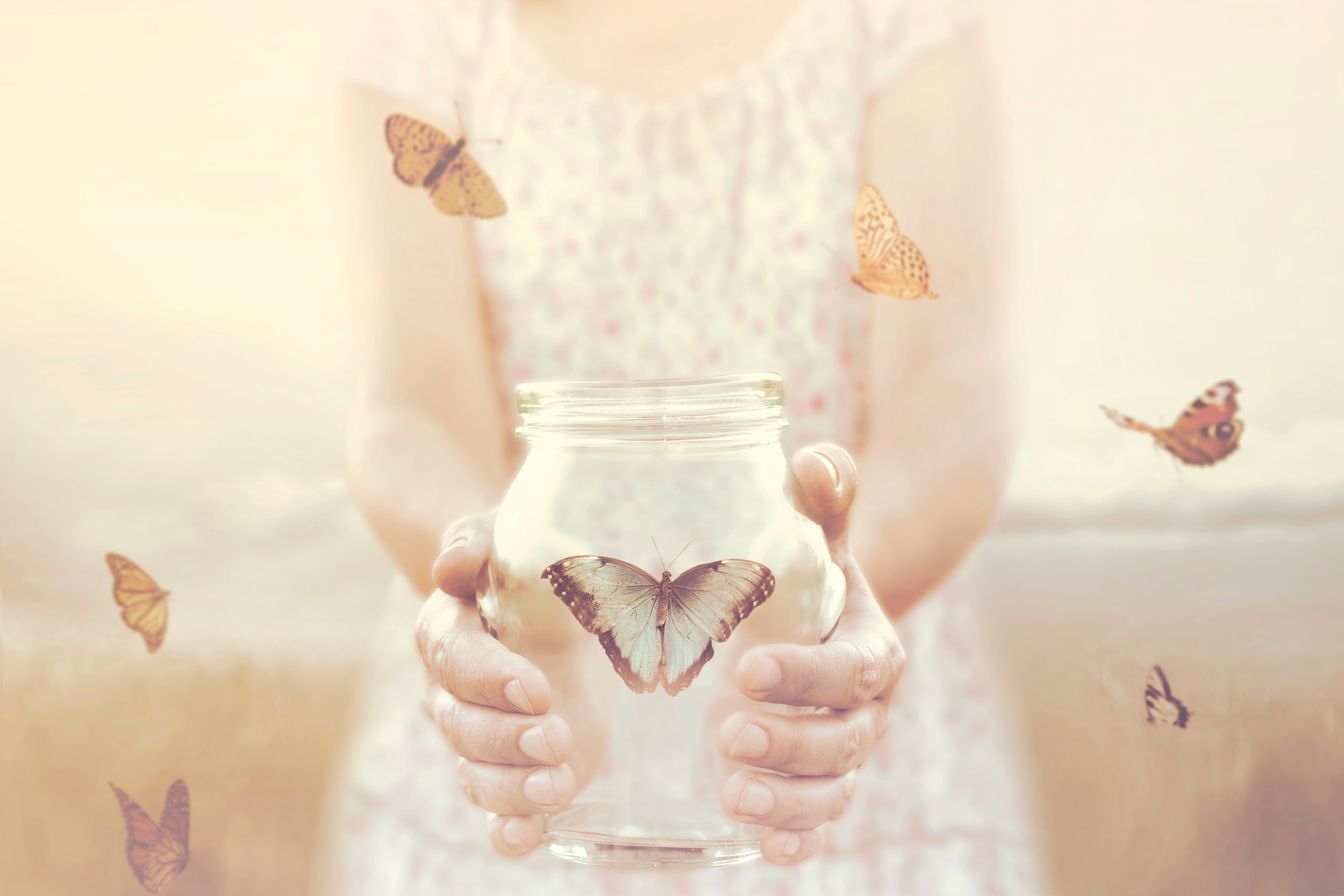 Butterfly in Jar.jpg