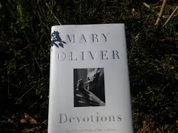 mary oliver devotions book