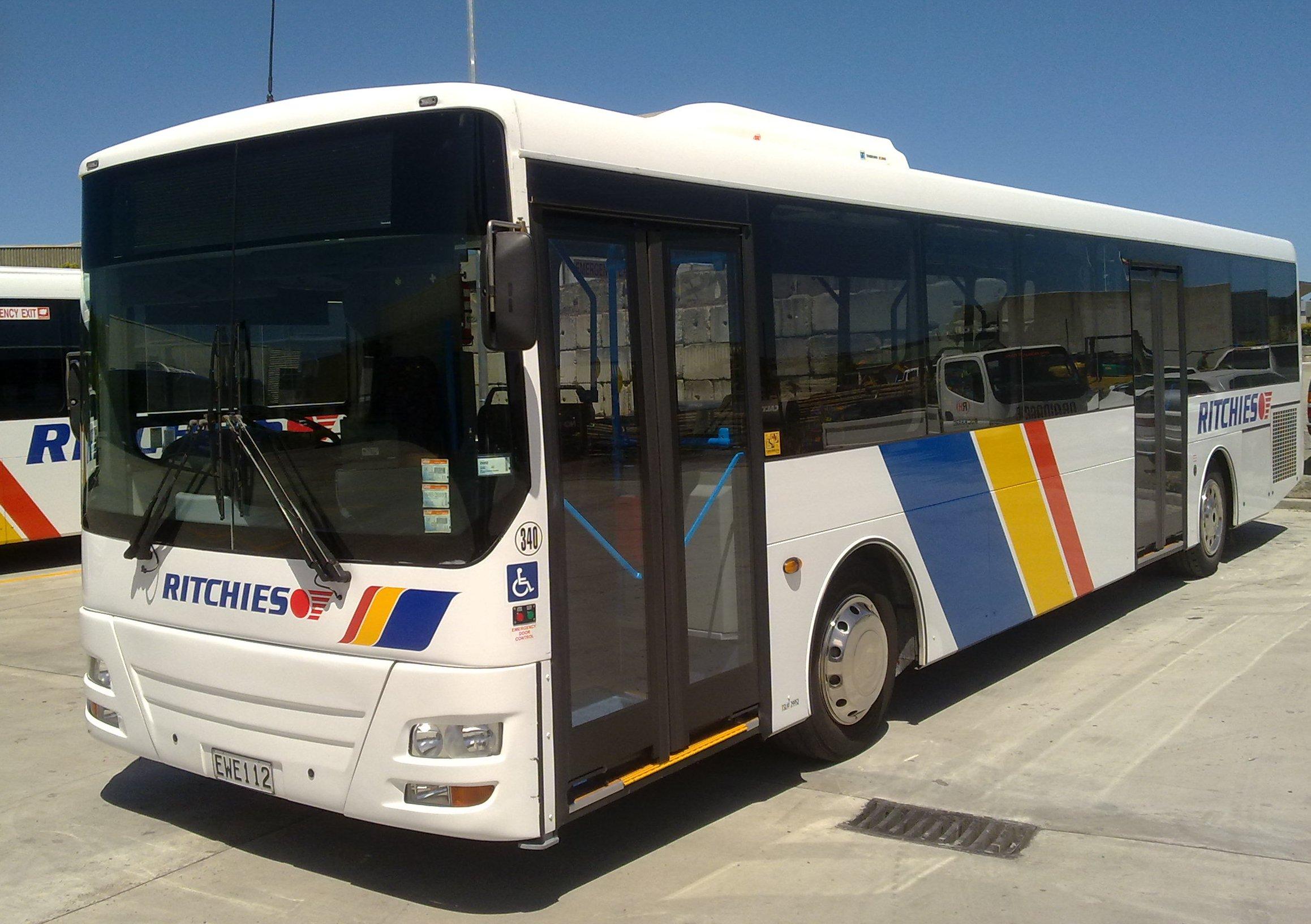 Designline-school-buses.jpeg