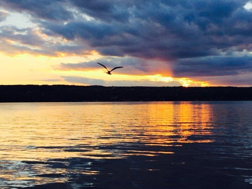 Sunrise with Bird.jpg