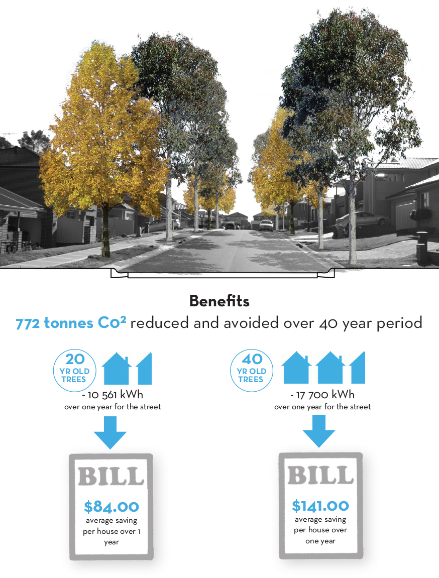 Increasing the trees on a street can reduce the CO2 in the air, and can also reduce household energy bills.