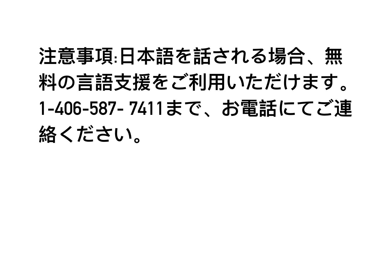 Japanese Tagline