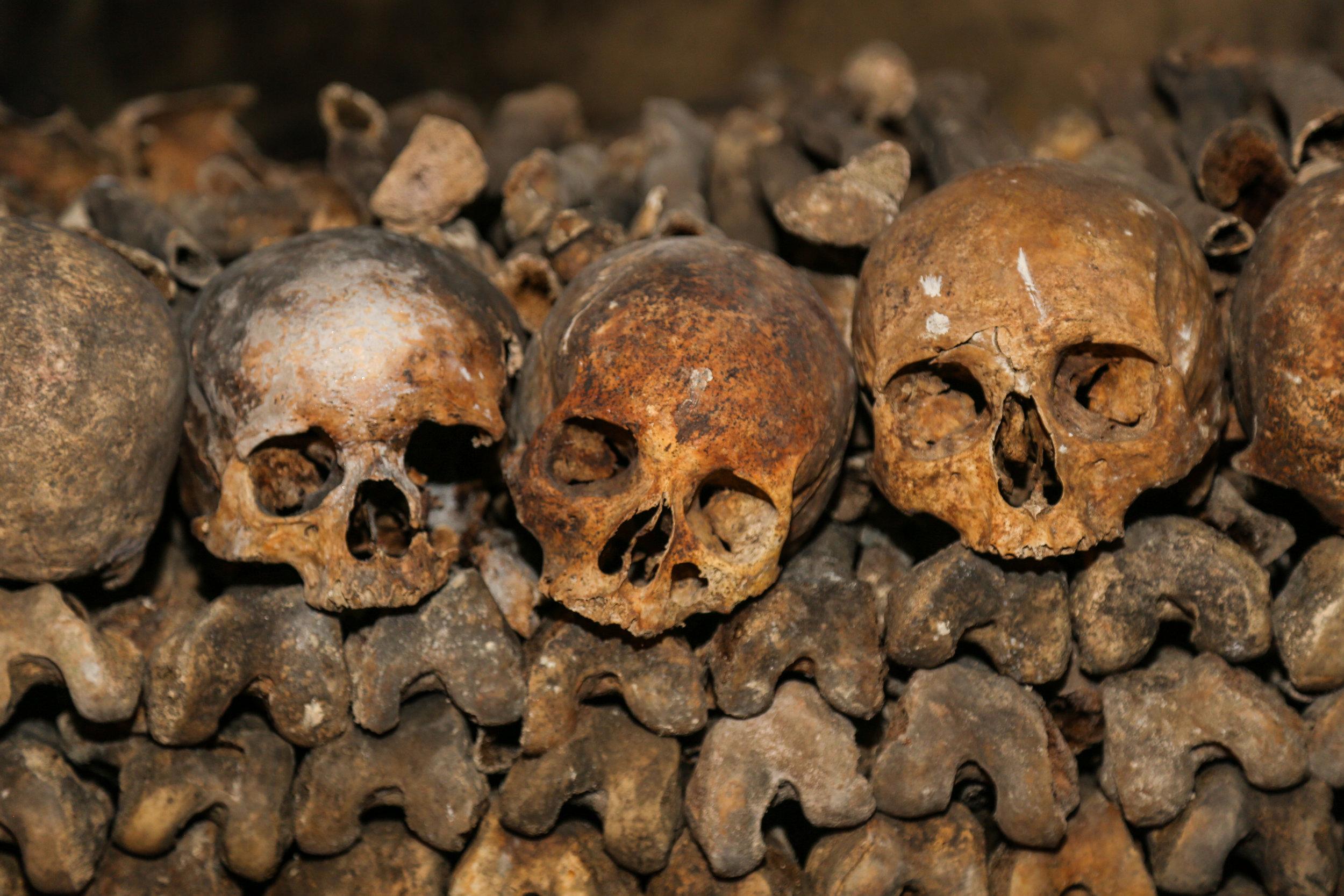 Skulls_In_Catacombs.jpg