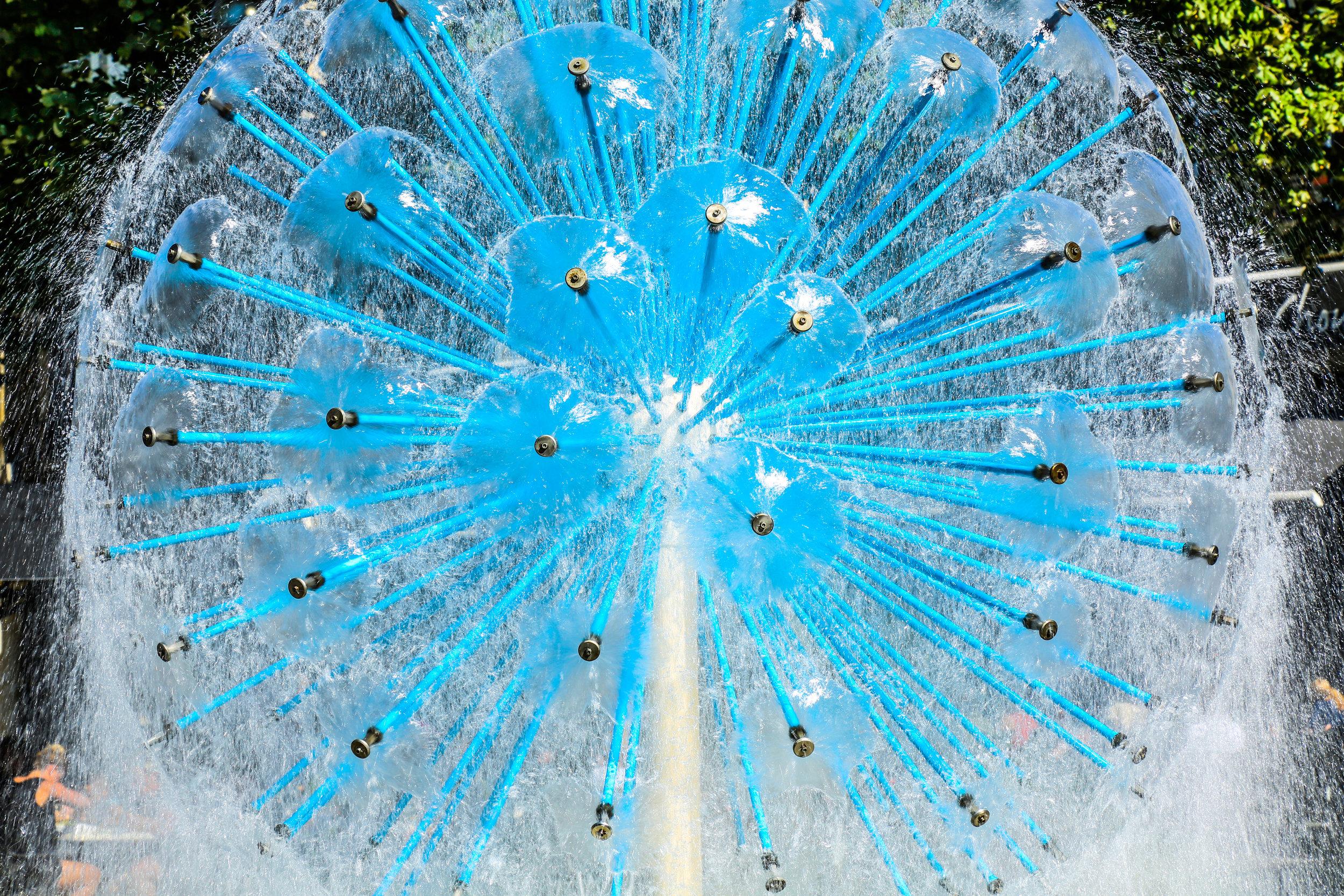 Water_Flower_Reims.jpg