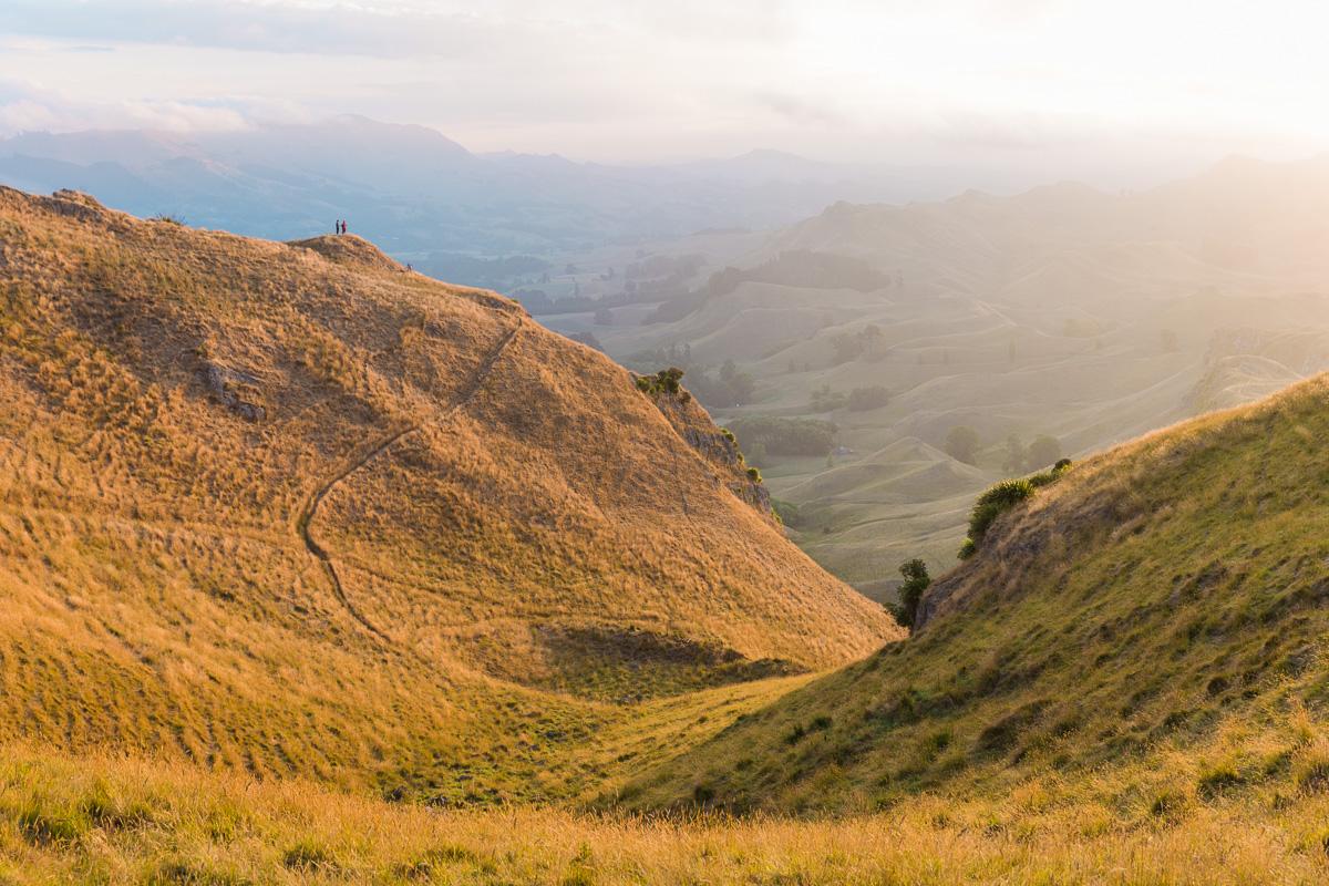 amalia-bastos-photography-napier-north-island-new-zealand-te-mata-peak.jpg