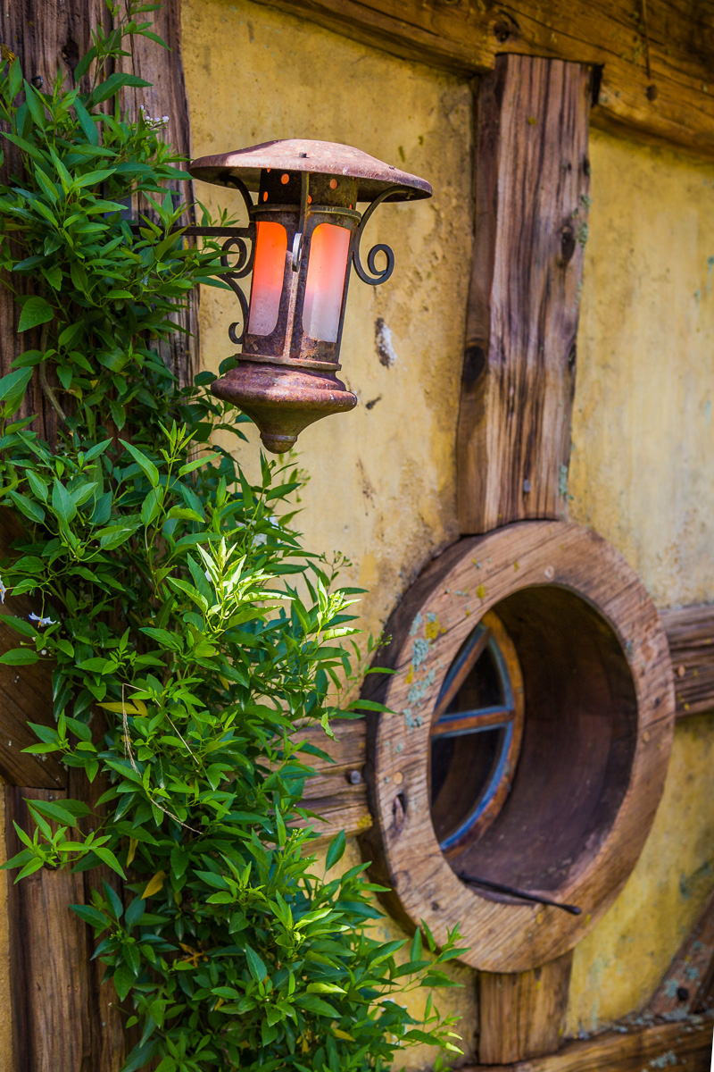 green-dragon-hobbiton-detail-new-zealand-north-island-hamilton-event-travel-photographer-nz.jpg