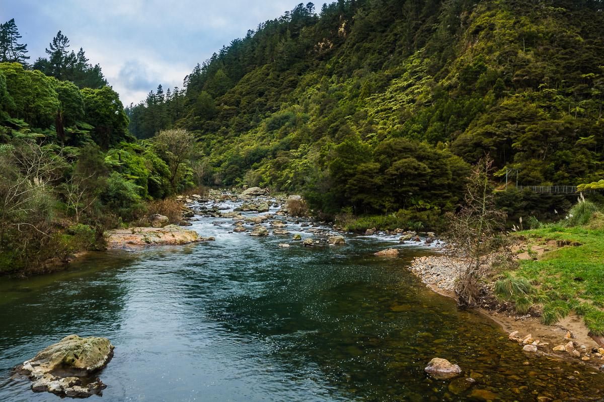 river-karangahake-gorge-new-zealand-north-island-coromandel-auckland.jpg