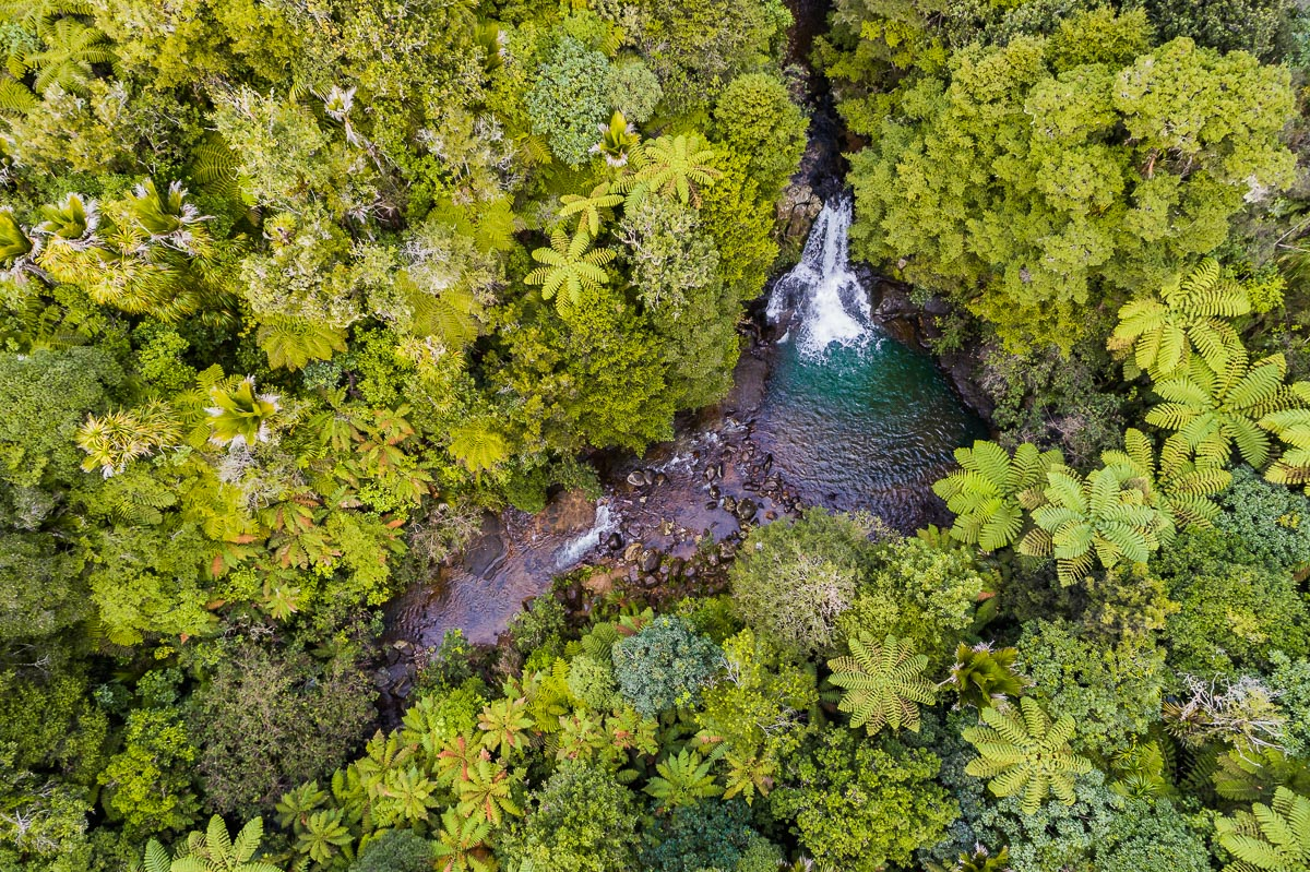 waiau-falls-waterfall-drone-aerial-photography-photographer-new-zealand-north-island-coromandel-roadtrip.jpg