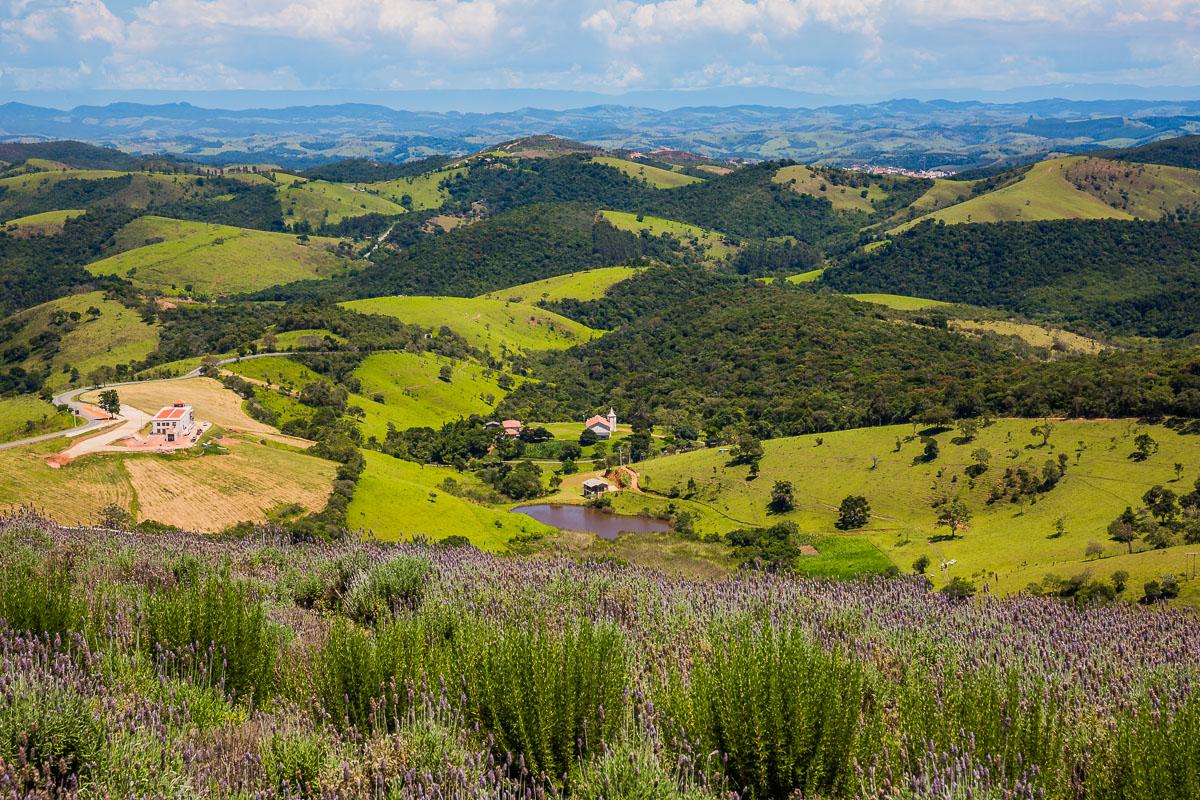 lavandario-paraty-sao-paulo-lavender-garden-gardens-farm-brasil-brazil-landscape-rural.jpg