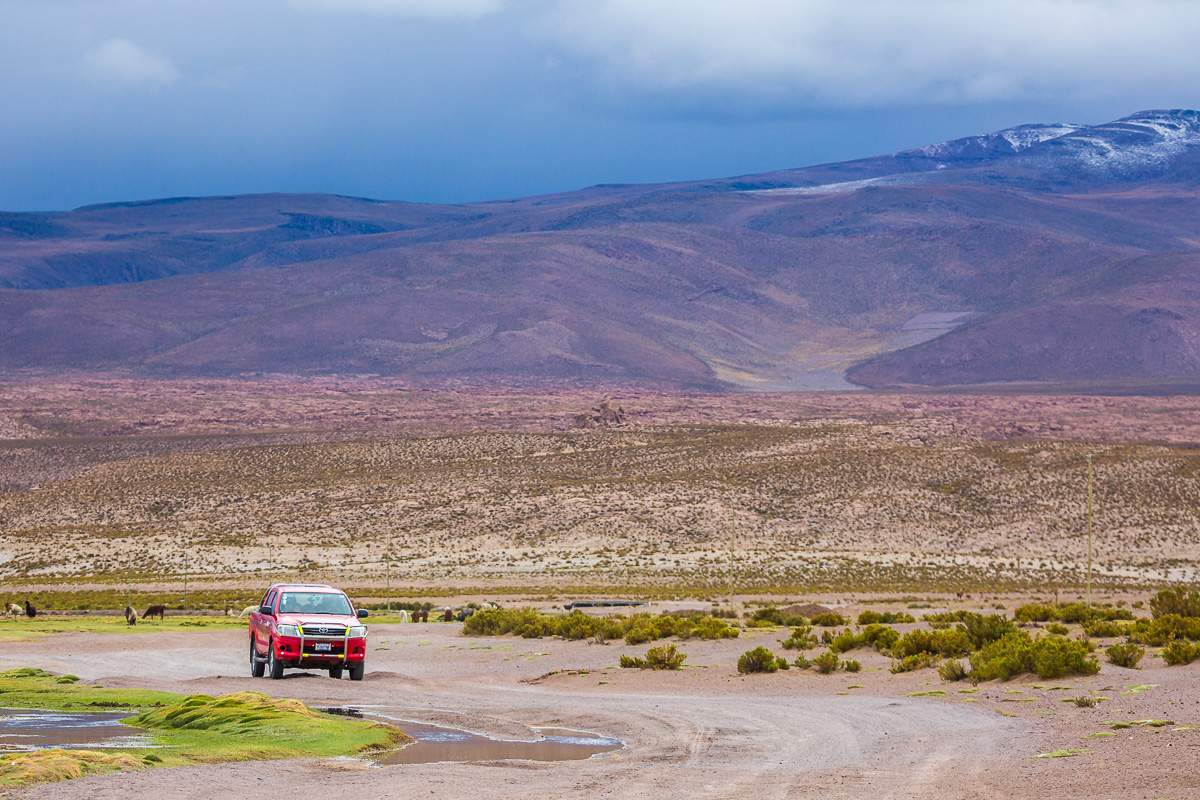 jeep-4x4-roadtrip-bolivia-road-landscapes-photography-photographer-llama-valley.jpg