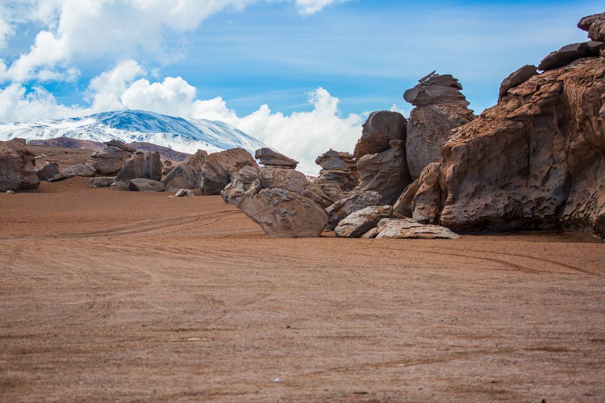 bolivian-landscape-siloli-desert-eduardo-avaroa-national-park-snow-mountain-rock-arbol-tree-stone.jpg