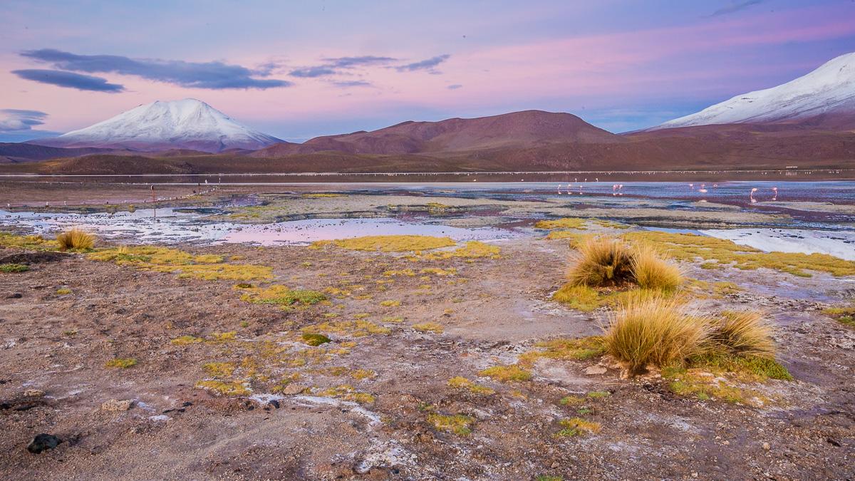 ecolodge-travel-photographer-bolivia-south-america-sunrise-los-flamencos-laguna-hedionda-landscape-photography.jpg