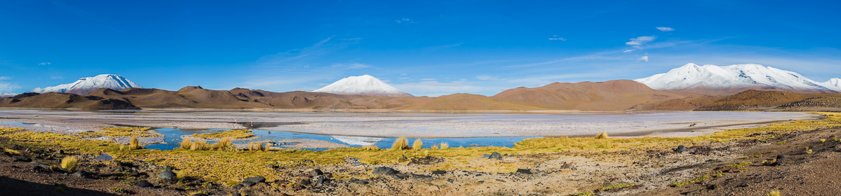 laguna-charcota-bolivia-landscape-travel-photography-expedition-adventure-photographer-workshop-inspiration-park.jpg