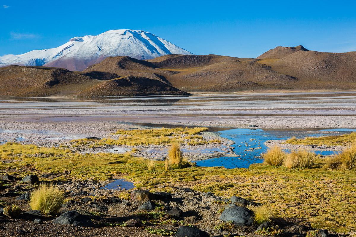 laguna-charcota-photography-eduardo-avaroa-national-park-lagoons-lakes-view-photography-pictures-bolivia-bolivian.jpg