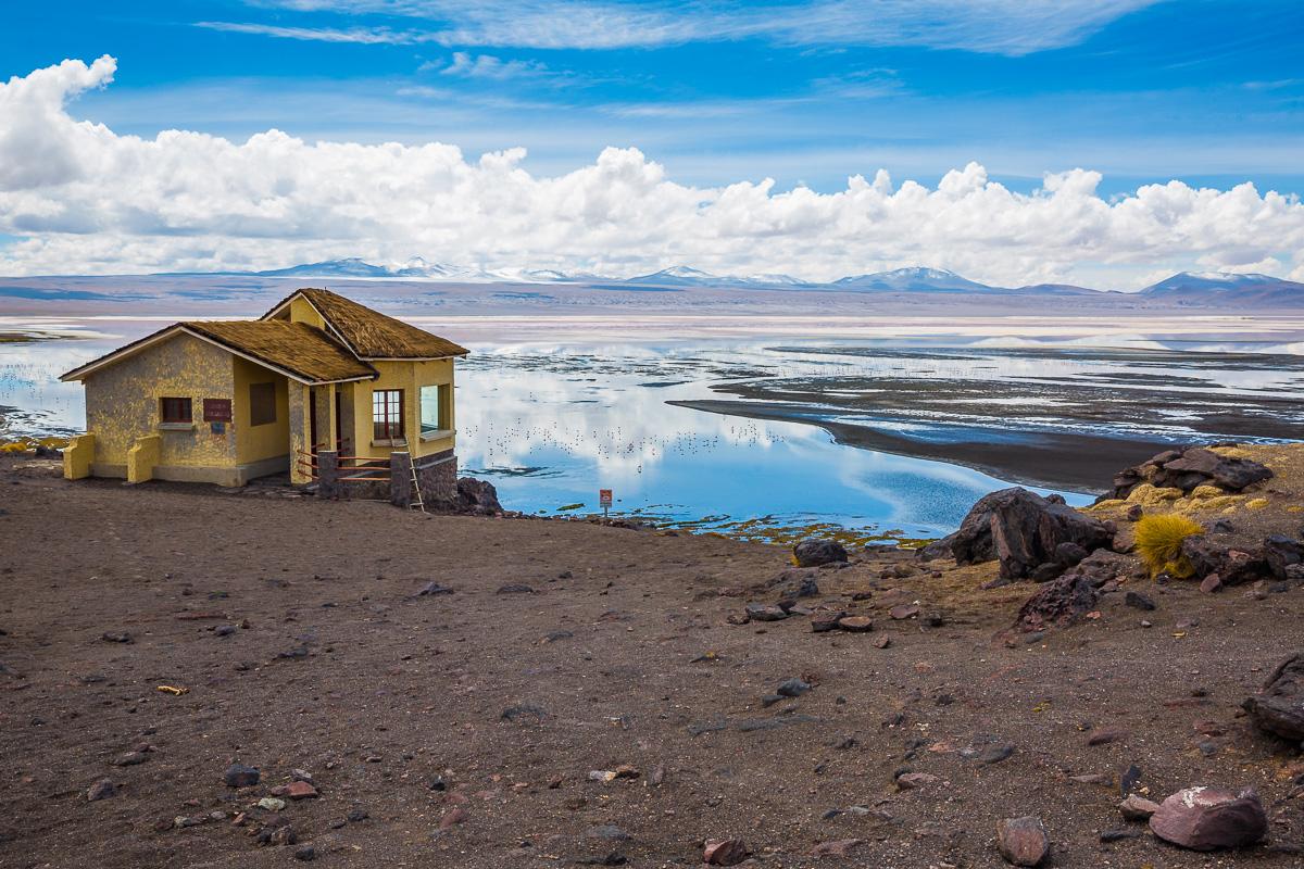 bolivia-destination-lagoon-laguna-colorada-eduardo-avaroa-abaroa-national-reserve-andean-fauna-lagoon-color-colour.jpg