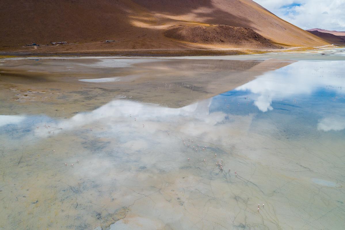 bolivia-eduardo-avaroa-abaroa-andean-fauna-national-park-reserve-drone-dji-aerial-flight-photography-travel-photos.jpg