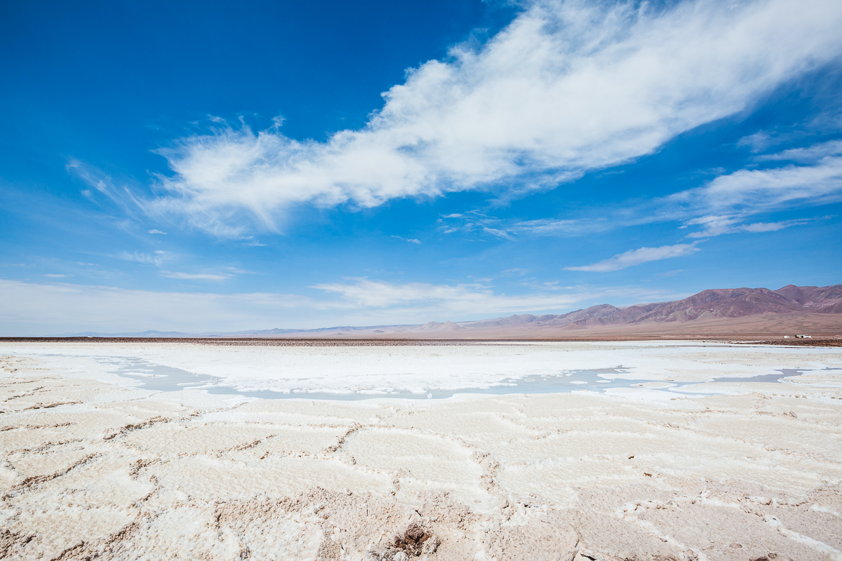 salt-flat-atacama-desert-chile-baltinache-lagunas-lagoons-escondidas-travel-south-america.jpg