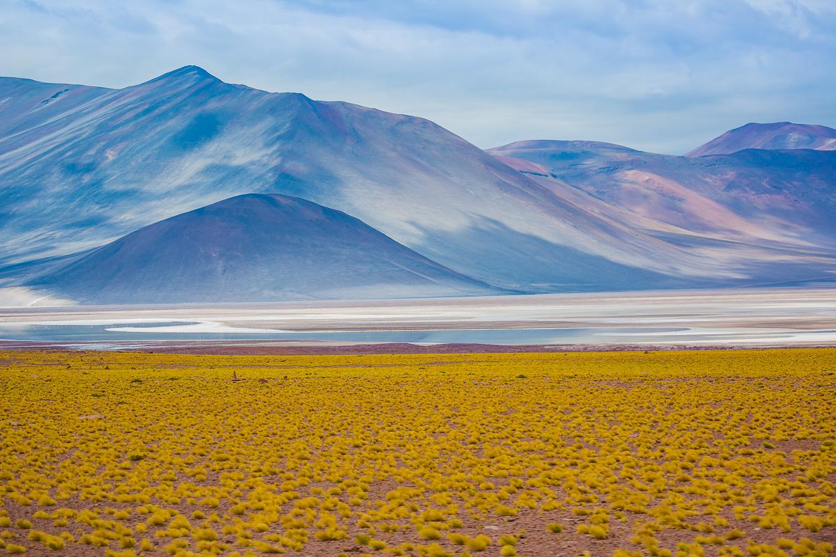 amalia-bastos-photography-light-south-america-chile-photography-lagunas-altiplanicas-lagoon-atacama.jpg