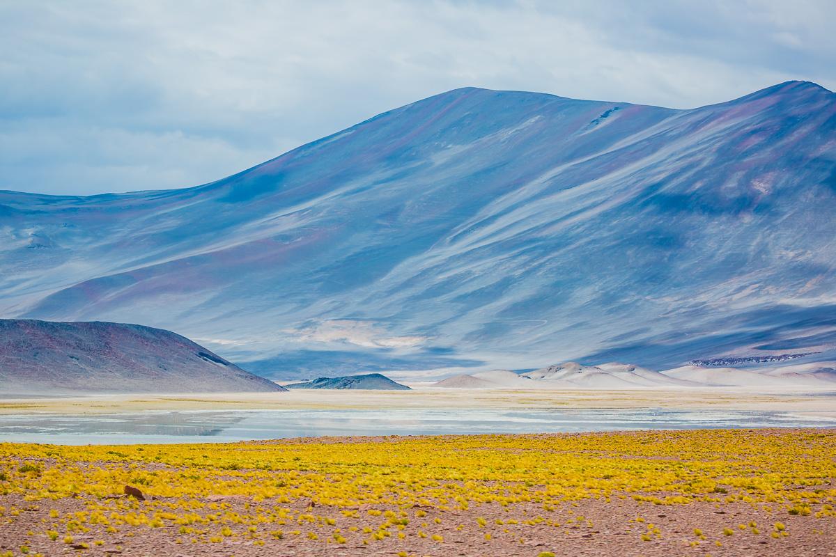 fine-art-photography-travel-chile-atacama-desert-lagunas-altiplanicas-lagoons-landscape.jpg