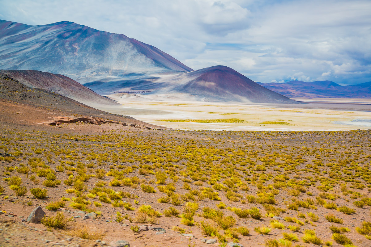 landscape-chile-south-america-atacama-desert-lagunas-altiplanicas-lagoons-mountains-light-photographer-travel.jpg
