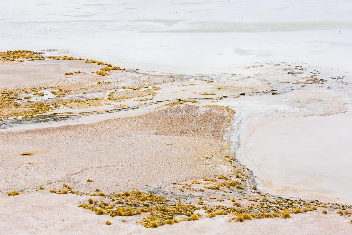 lagunas-altiplanicas-white-landscape-stream-atacama-desert-chile-south-america.jpg