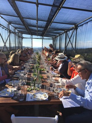 Hedge+Batch+Winery+long+table++wine++cheese+matching.jpeg