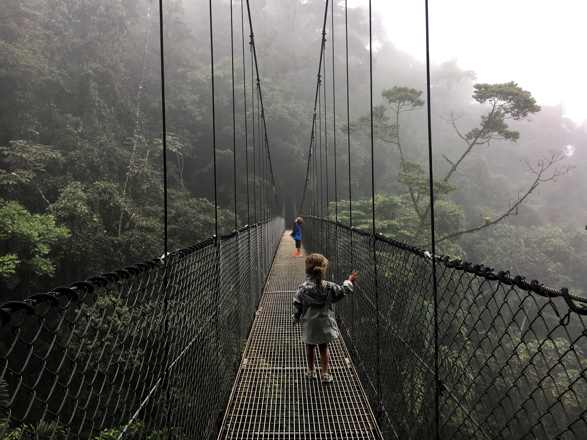 Hiking at the  Mistico Arenal Hanging Bridges Park