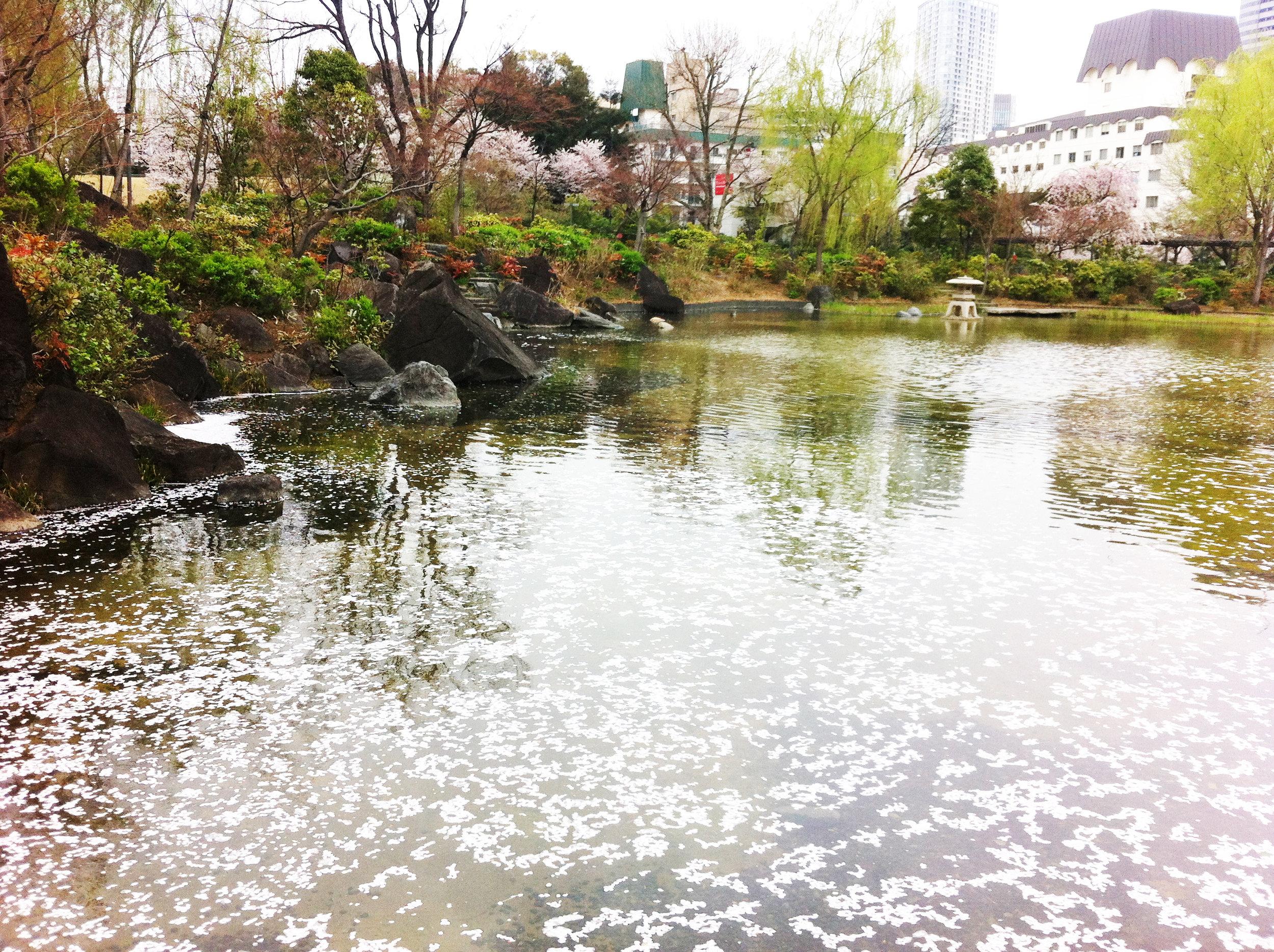 hinokicho_park.jpg