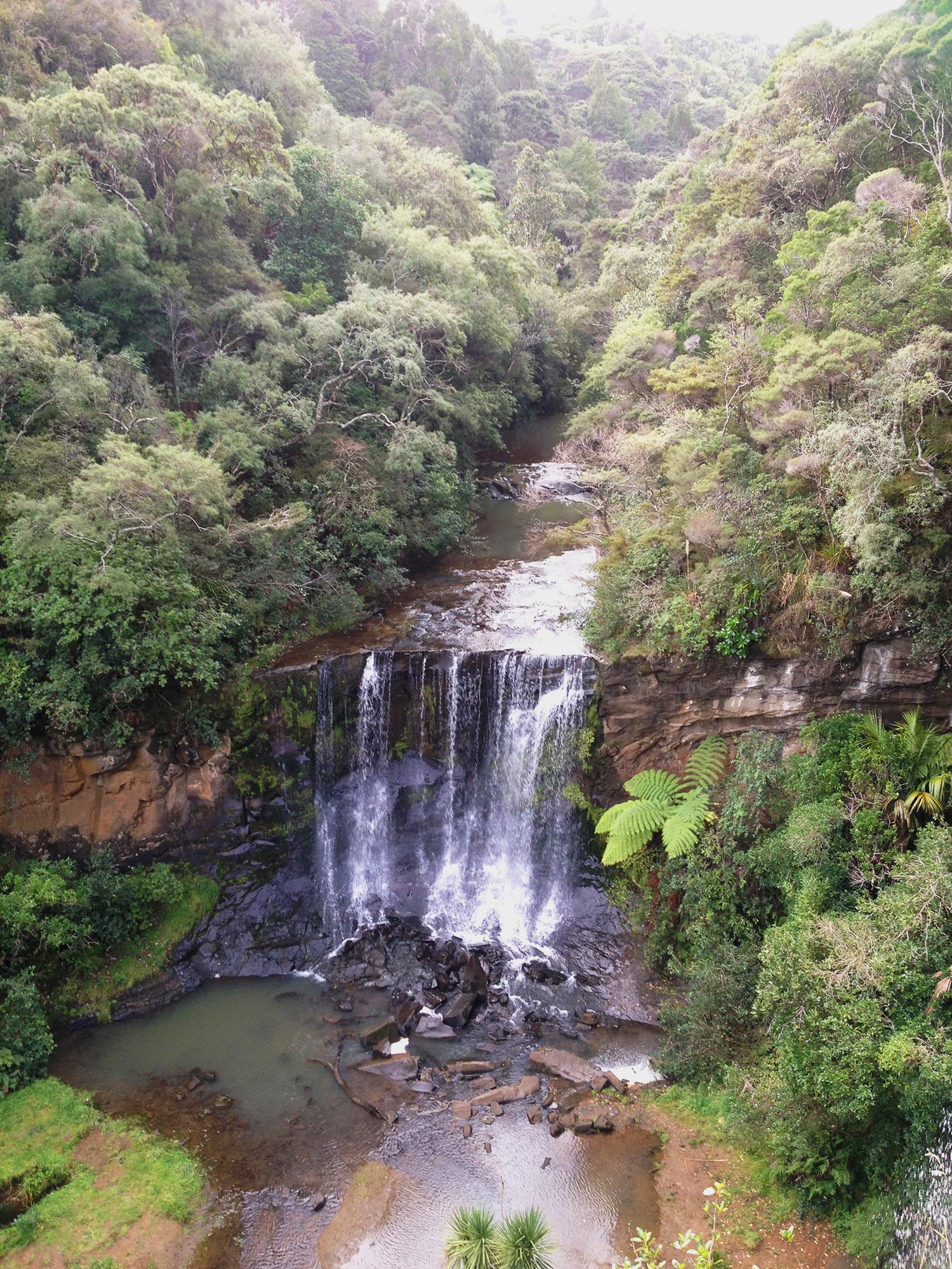 1   Mokoroa Falls, Waitakere Ranges, West Auckland
