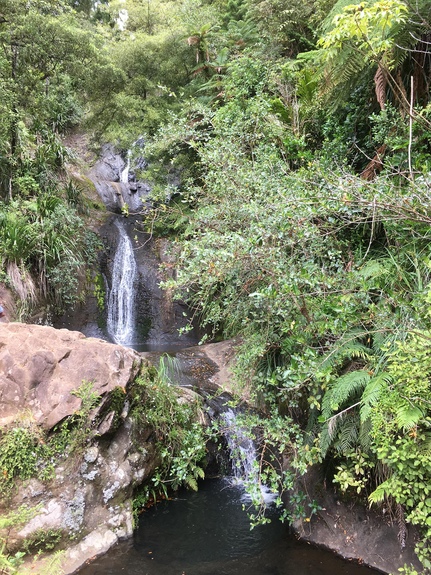 9   Fairy Falls, Waitakere Ranges, West Auckland