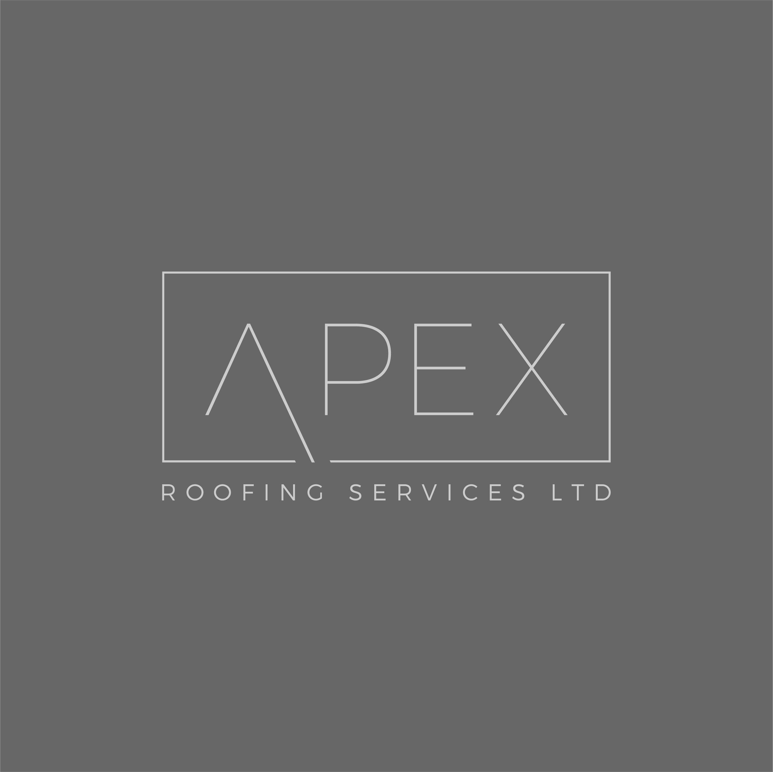 Apex Logo Design