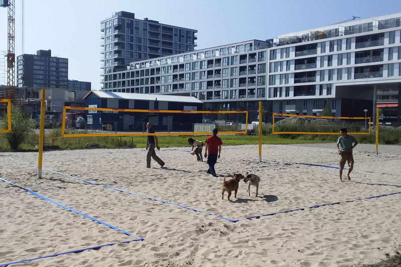 Beach Volleyball_placemaking_kaskantine_placemakingplus_dekey_Communityexpert.jpg
