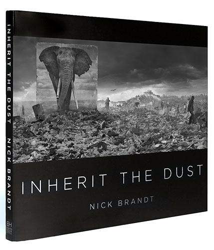 Inherit the Dust, Nick Bandt, 2015